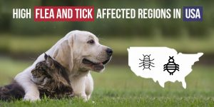 High-Flea-And-Tick - CanadaVetCare