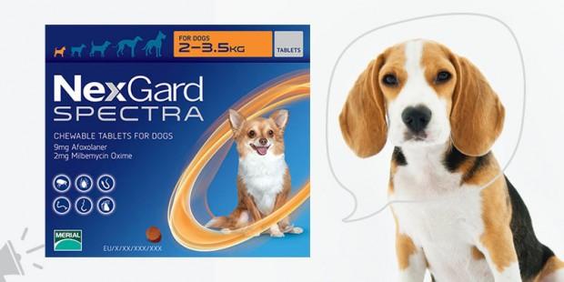 Nexgard Spectra for Dogs