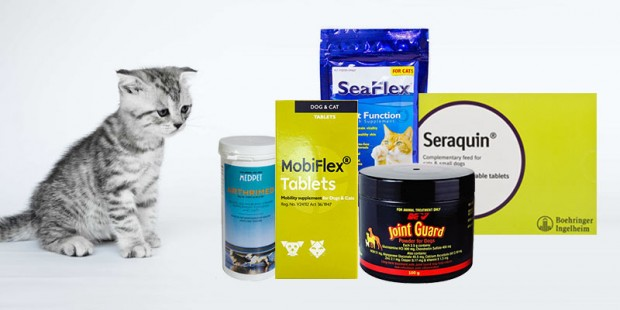 top 5 joint care treatment for dogs and cats