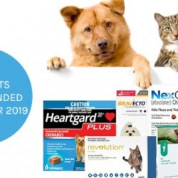 top products by vet