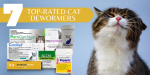7 Top-Rated Cat Dewormers of 2021