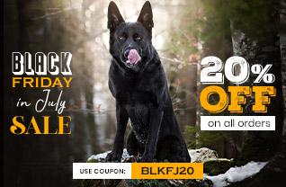 Black Friday in July Sale