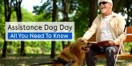 Assistance Dog Day: All You Need To Know