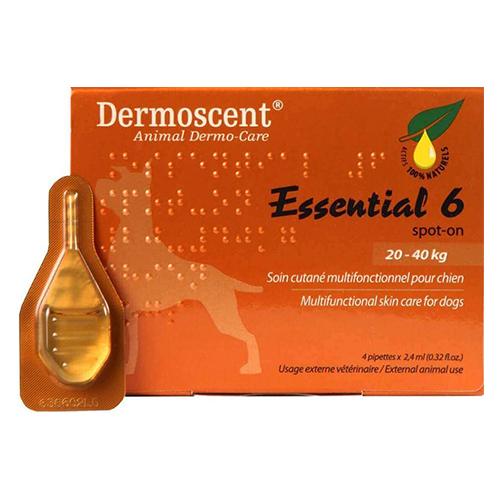 Essential 6