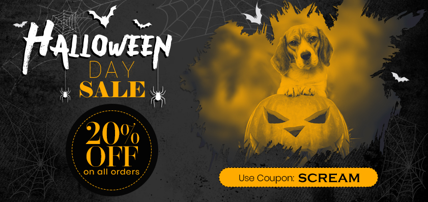 CVC-main-Halloween-Oct21_10142021_023507.jpg
